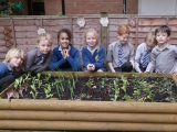 Sodexo expands dig for future schools initiative